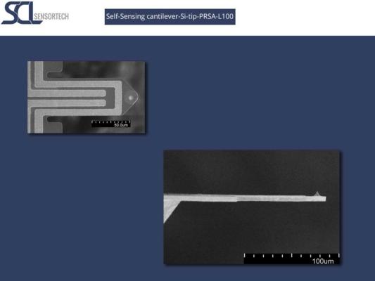 Self-Sensing-cantilever-Si-tip-PRSA-L100-different-views
